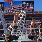 Ziggler and Bryan take a nasty fall during the Ladder Match