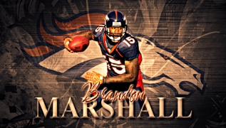 brandon-marshall-denver-broncos